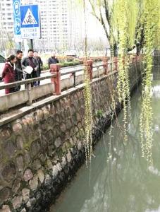 局督导检查宜兴和江阴黑臭水体整治工作